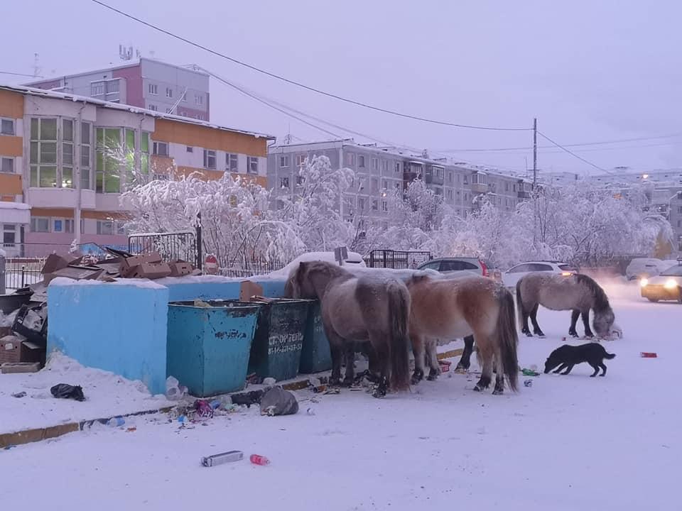 сбербанк кредиты калькулятор для физических лиц казахстан