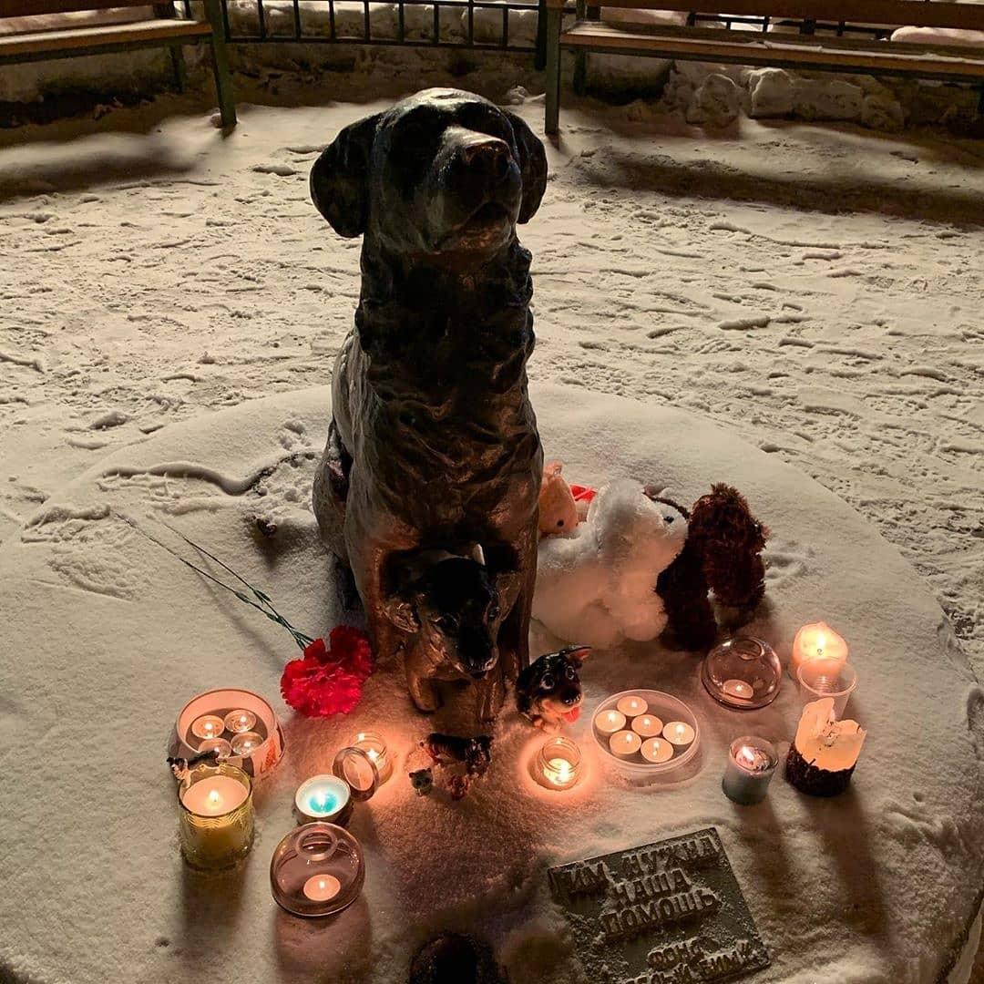 картинки свеча памяти животным пожарной