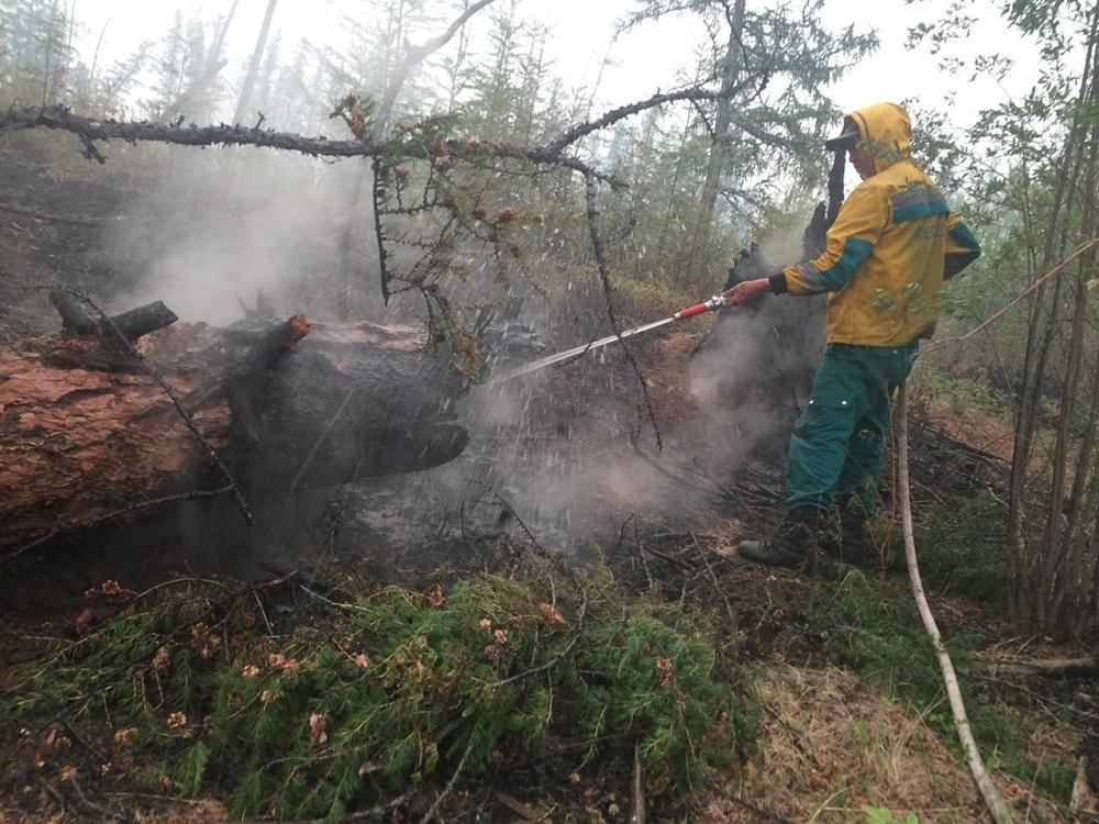 вопрос тушение лесного пожара картинки запросу