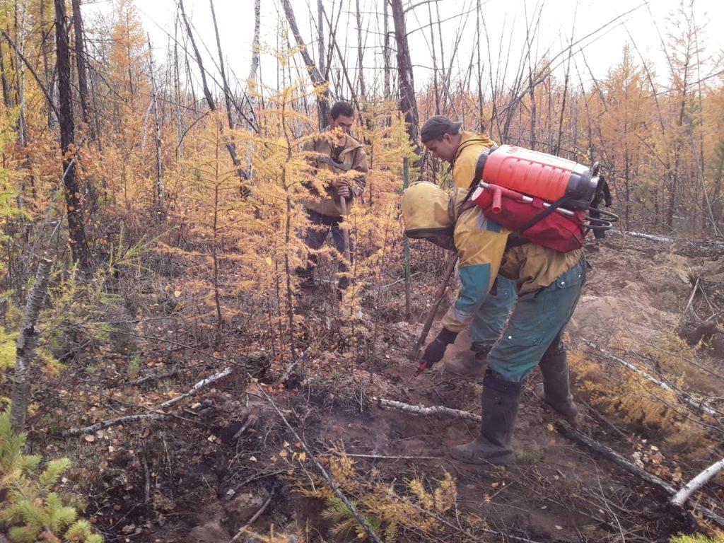 самом о лесных пожарах в якутии фото хороша