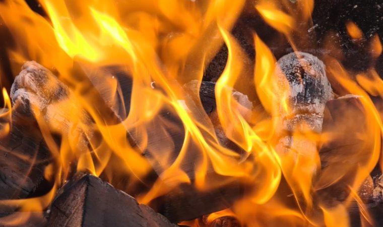 В Якутии в частном коровнике сгорело более 100 животных