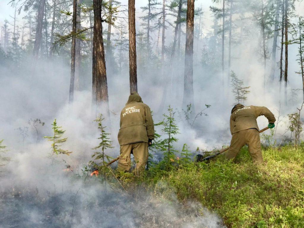Якутия охвачена лесными пожарами